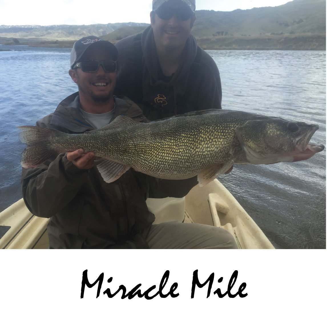 Miracle Mile Fly Fishing Wyoming